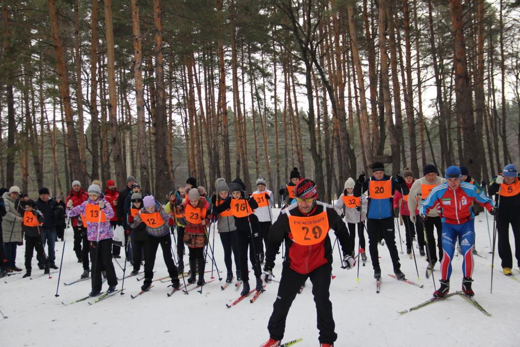 Лыжи ГТО 010
