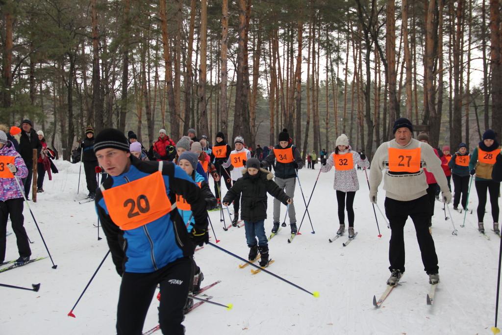 Лыжи ГТО 019