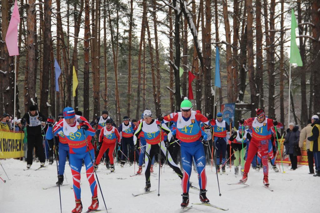Лыжные гонки на кубок главы админ БГО ВО 066