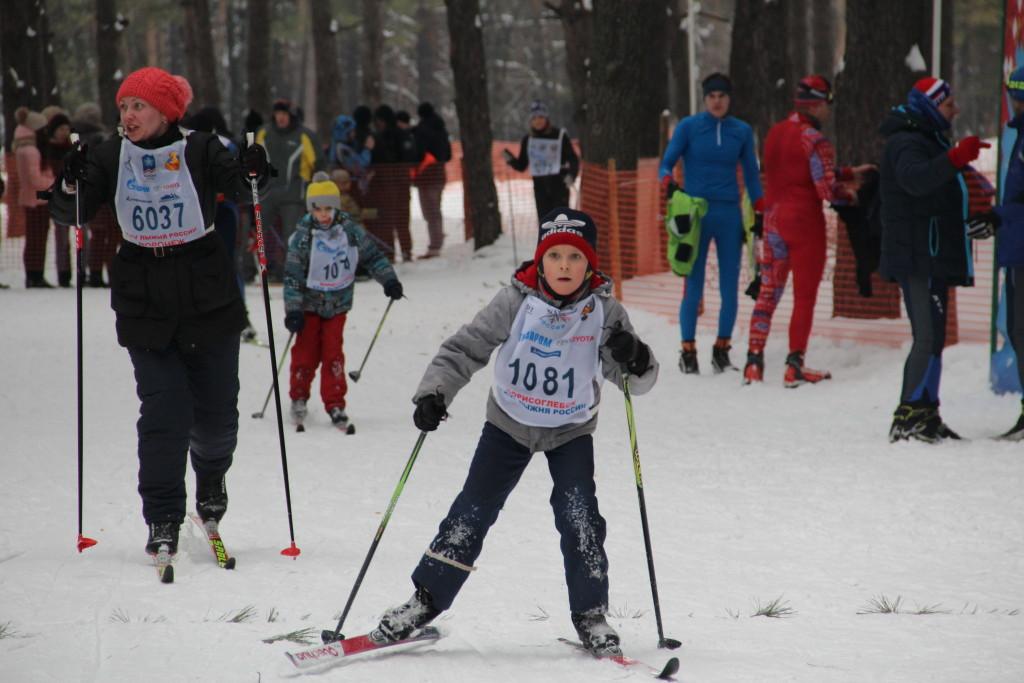 Лыжные гонки на кубок главы админ БГО ВО 265