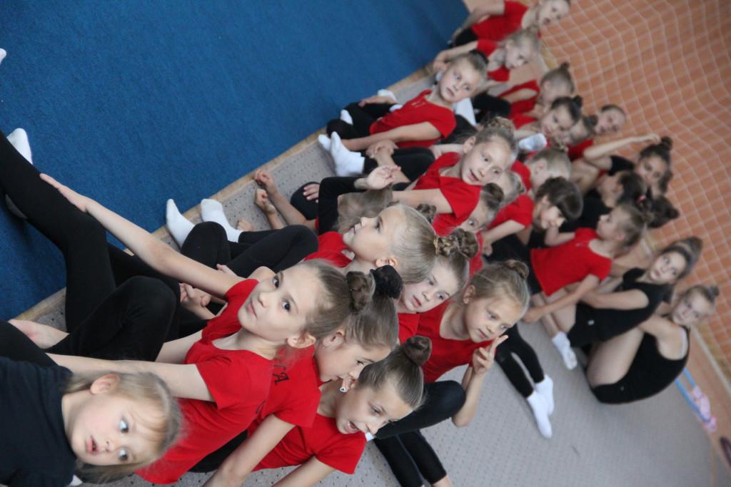 ФОТО Художественная гимнастика 12.07.17г. 013