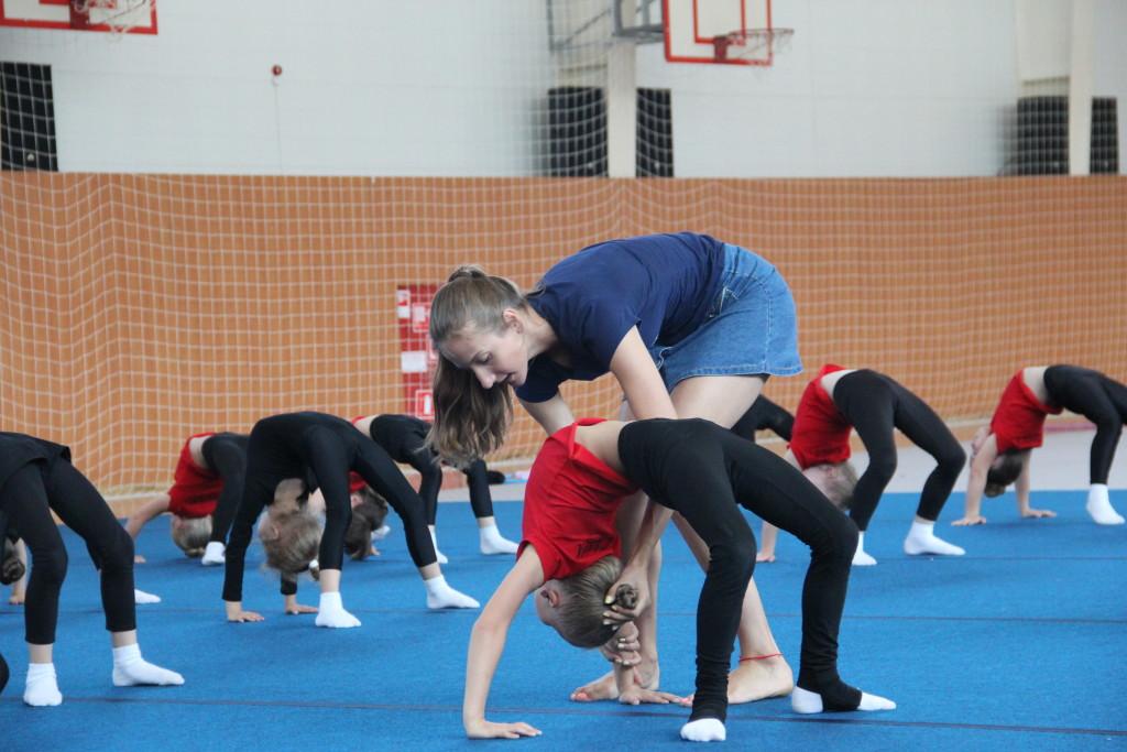 ФОТО Художественная гимнастика 12.07.17г. 031