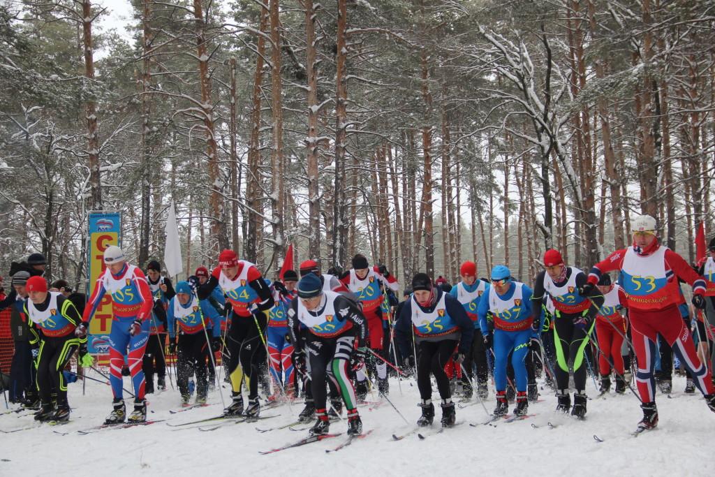 Лыжи.Кубок АО Борхиммаш2018 г. 046